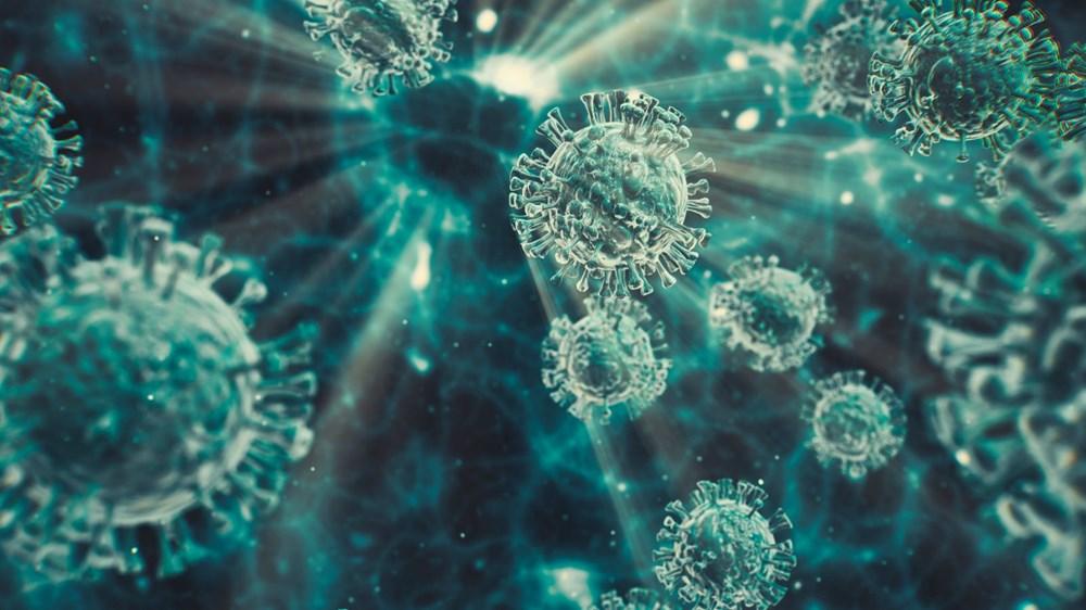 Corona virüsün yeni mutasyonu hakkında bilinmesi gereken her şey: VUI - 202012/01 nedir? - 4