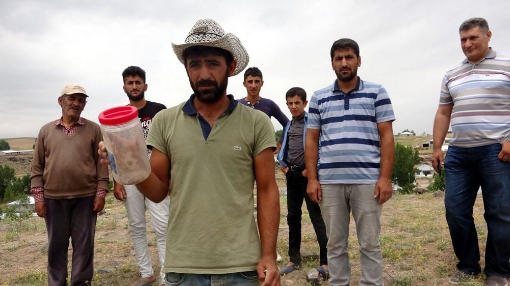 Van'da bir mahallede akrep istilası - 6