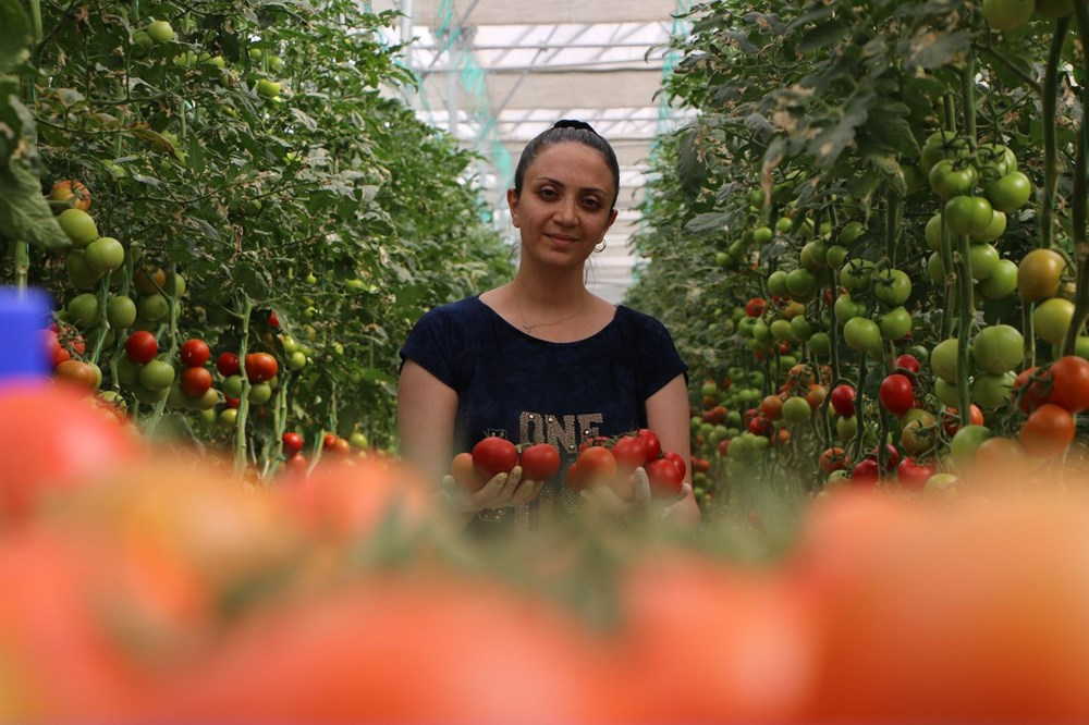 Elazığ'da topraksız tarım, kadınlara iş kapısı oldu - 1