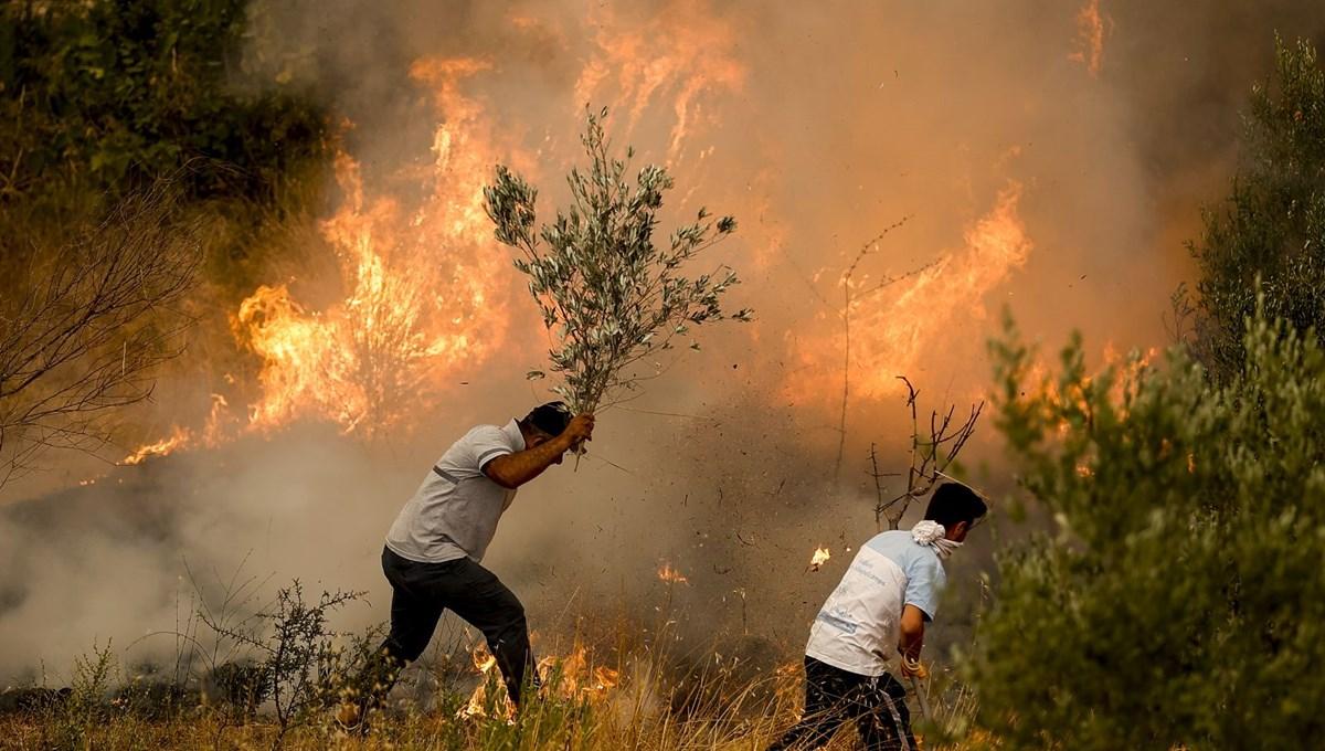 Antalya, Adana, Mersin, Muğla ve Osmaniye'de orman yangınları
