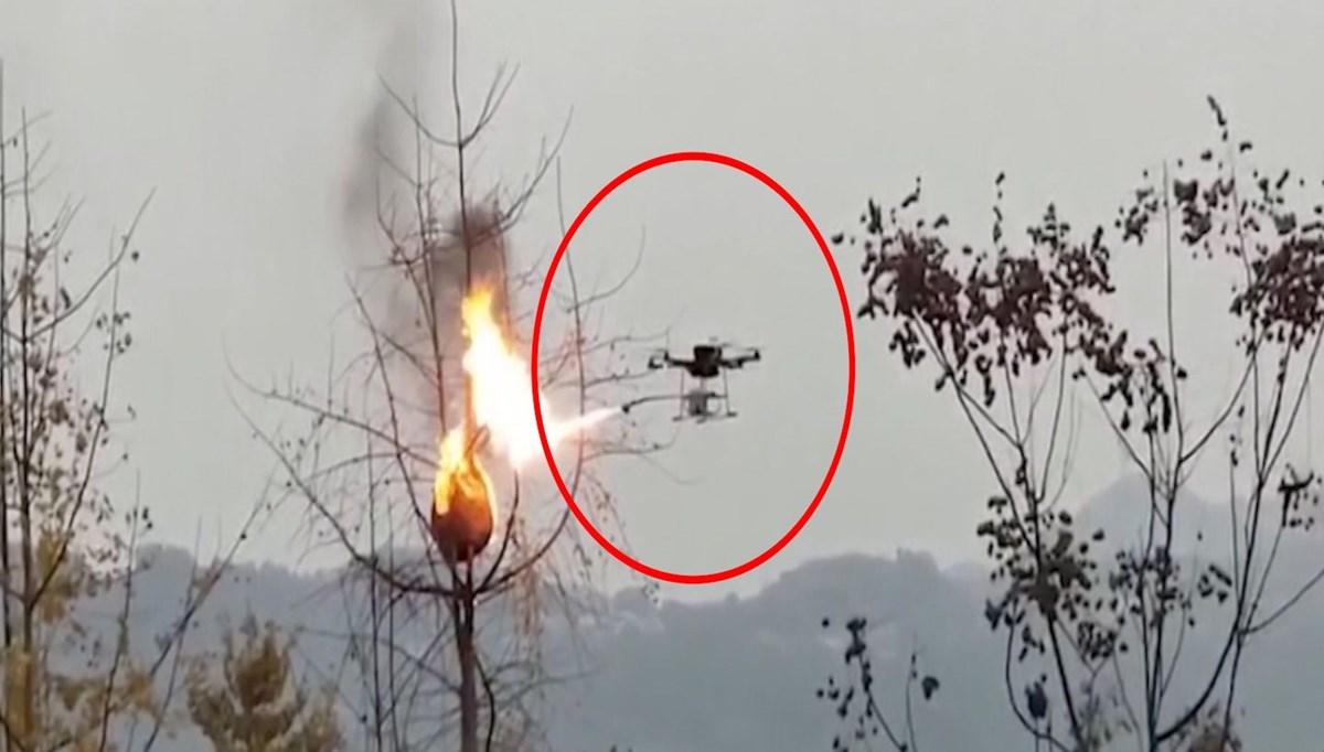 Eşek arılarının kovanları drone ile yakıldı