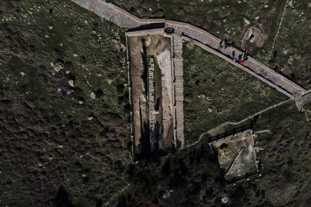 Yunanistan'da 20 milyon yıllık taşlaşmış ağaç bulundu - 6