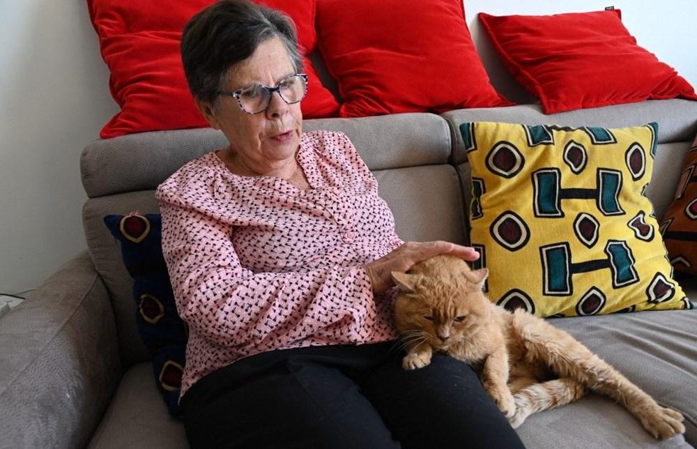 Araştırma: Karantina nedeniyle kediler insanlardan bıktı, sakinleştirici kullanıyorlar - 4
