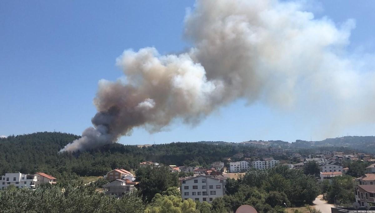 SON DAKİKA HABERİ: Bursa'da orman yangını