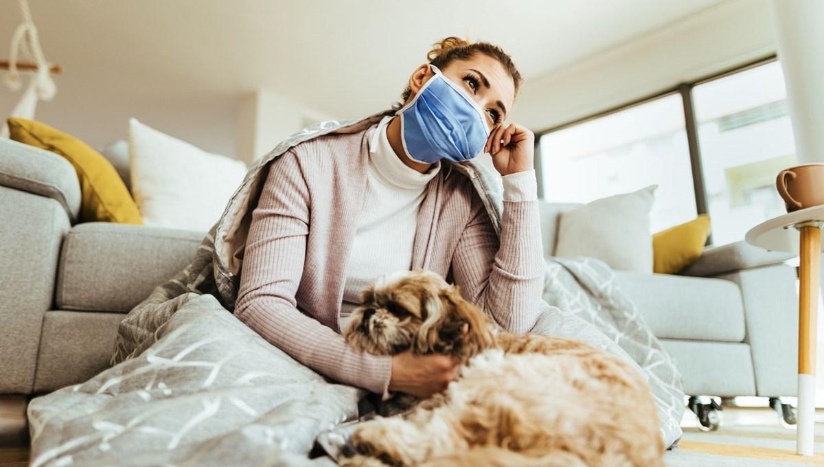 Pandemide sahiplenilen her beş köpekten biri terk edilme riskiyle karşı karşıya