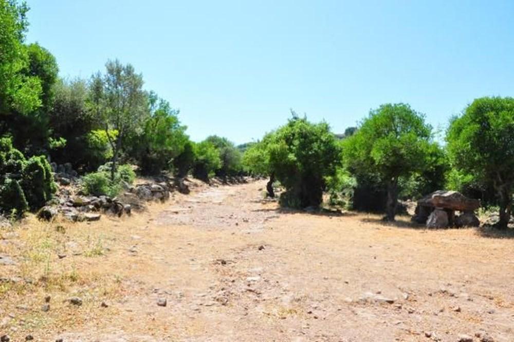 Aigai Antik Kenti'nde 3 bin mezar: Ortalama yaşam 40-45 yıl - 18