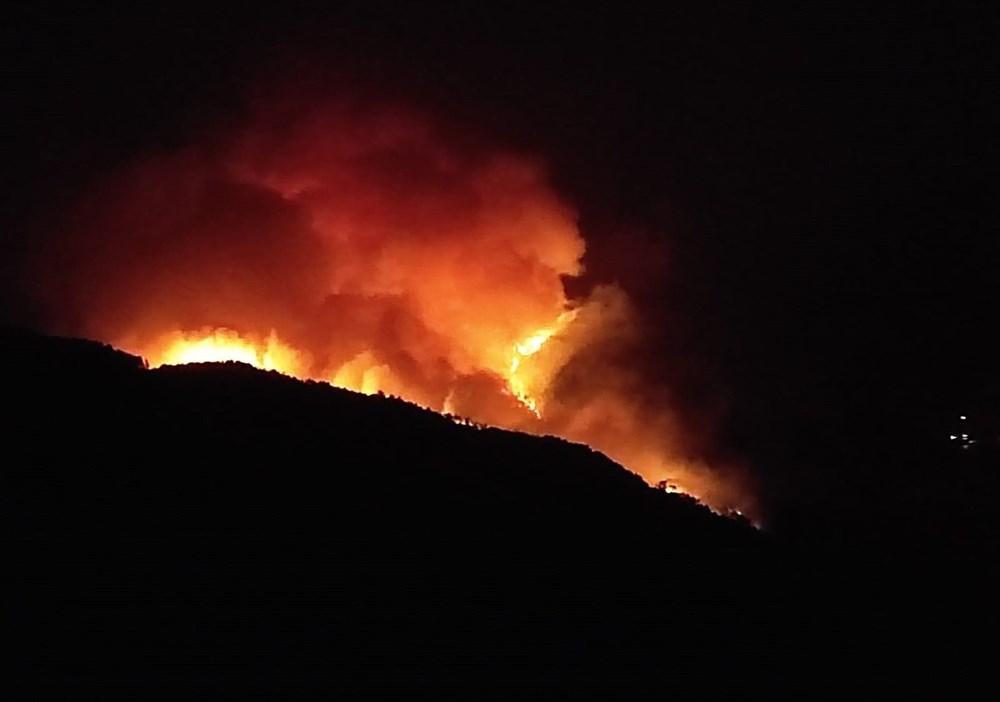Antalya, Adana, Mersin, Aydın, Muğla, Osmaniye, Kayseri ve Manisa'da orman yangınları - 19