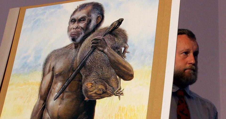 Başka bir çalışmada 15 ila 18 bin yıl önce Güney Pasifik'in Flores adasında yaşamış olan 'Hobbit'lerin, sanılandan daha büyük bir beyne sahip olduklarını iddia etmişti.