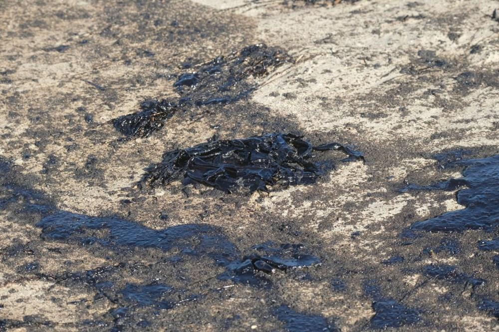 California'da çevre felaketi: Sahil petrolle kaplandı - 9