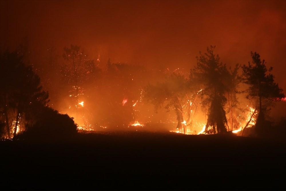 Antalya, Adana, Mersin, Aydın, Muğla, Osmaniye, Kayseri ve Manisa'da orman yangınları - 6