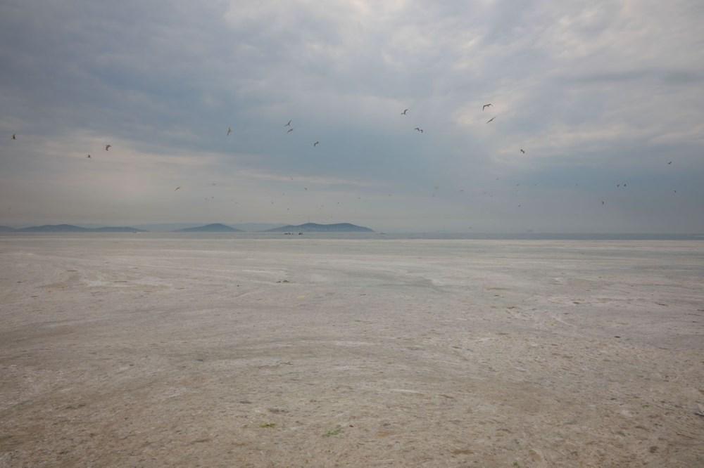 İstanbul'un sahilleri müsilajla doldu: 95 yıldır böyle bir şey görmedim - 14