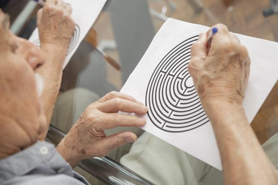 alzheimer'a karşı SİYAH ÇİKOLATA TÜKETİN ile ilgili görsel sonucu