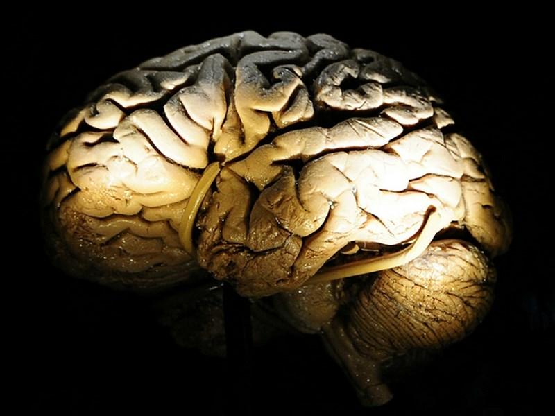 Sağlıklı bir beyin nasıl yaşlanıyor?