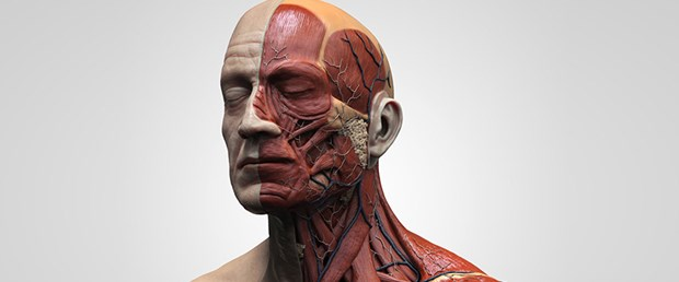 Baş-boyun kanserleri bu belirtilerle ortaya çıkıyor.jpg