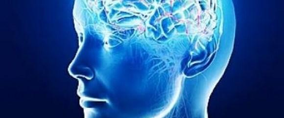 Beynin sırlarını çözecek keşif