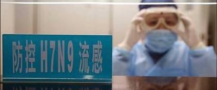 Bir günde 10 H7N9 vakası