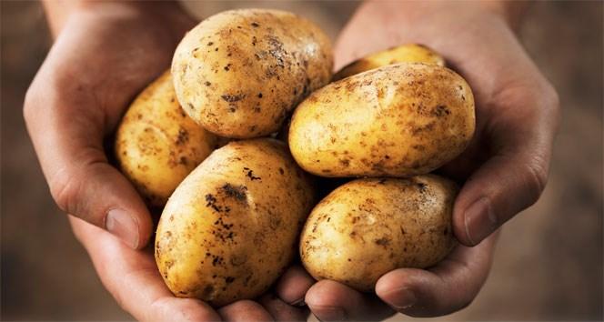 5- Patates
