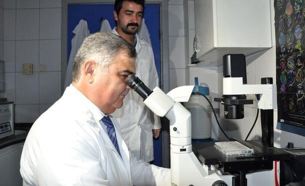 Prof. Dr. Mehmet Korkmaz