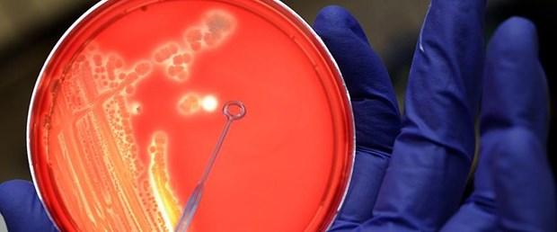 bagirsak-mikrobu-aa.jpg