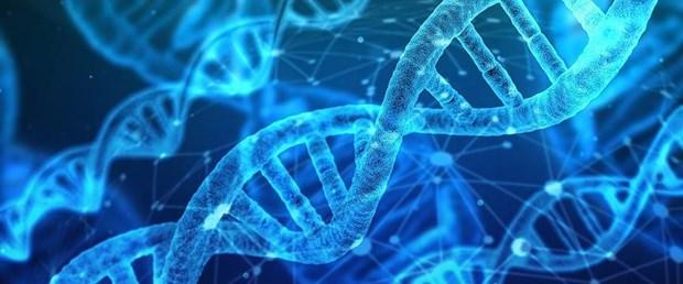 DNA AA.jpg