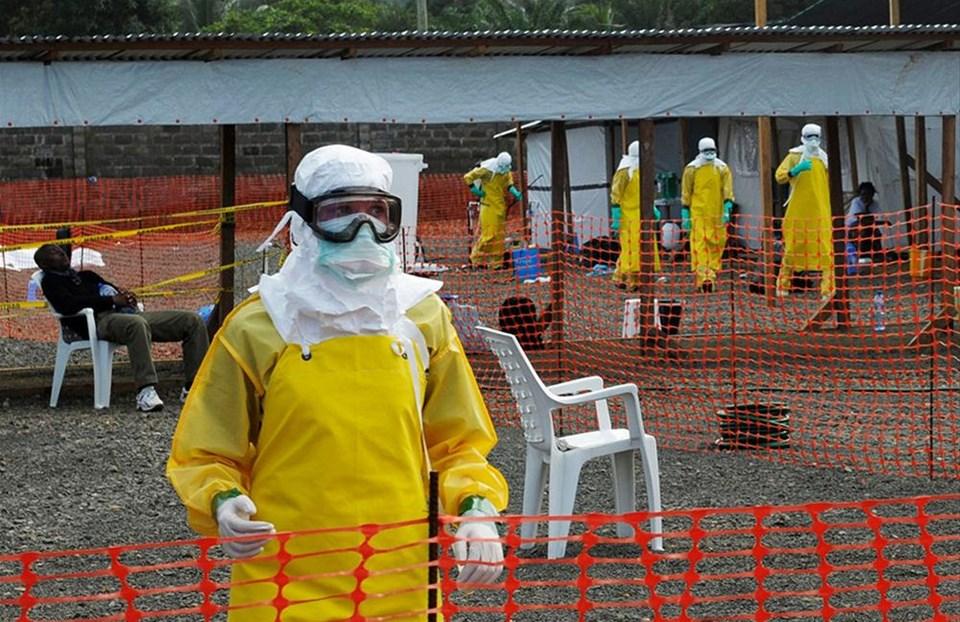 'Dünya ebola savaşını kaybetti'