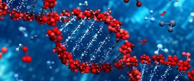 genetik1,oW2O1T3Zakij7YfkpJFT_w.jpg