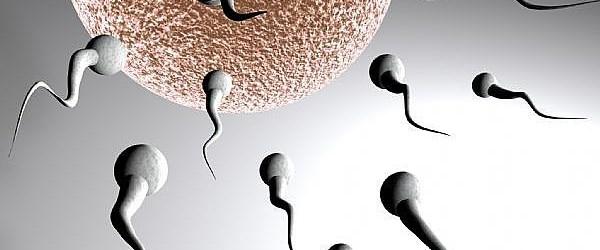Erkek kısırlığının nedeni gen mutasyonu