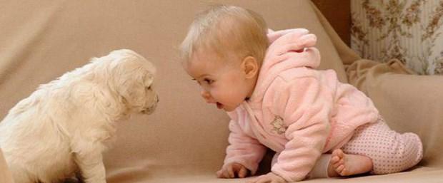 Evcil hayvan beslemek çocuk sağlığını nasıl etkiler.jpg