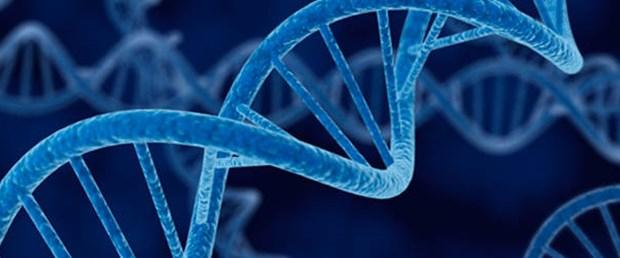 Genetik kimliğiniz ne diyor?