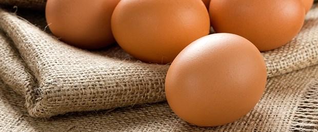 Günde bir yumurta boy uzatıyor.jpg