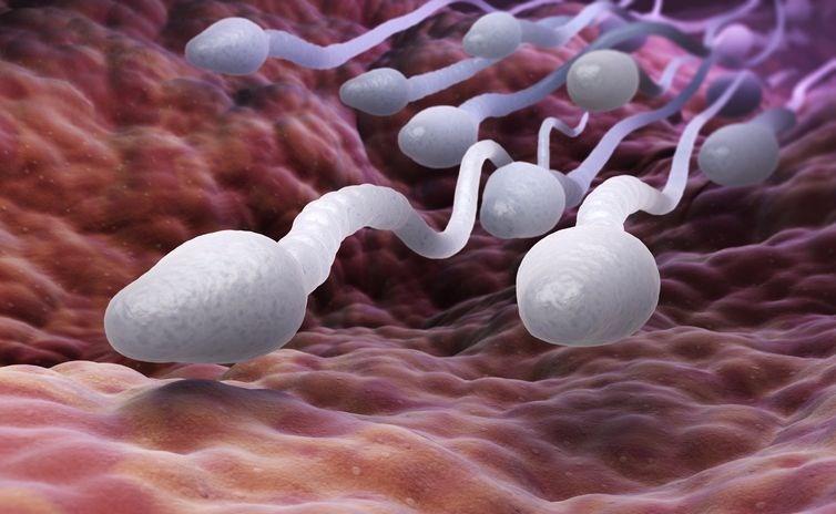 hamilelik, hamile kalmayı engelleyen sebepler, gebelik