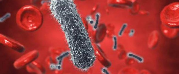 Hepatit C nasıl bulaşır, kimler risk altında.jpg