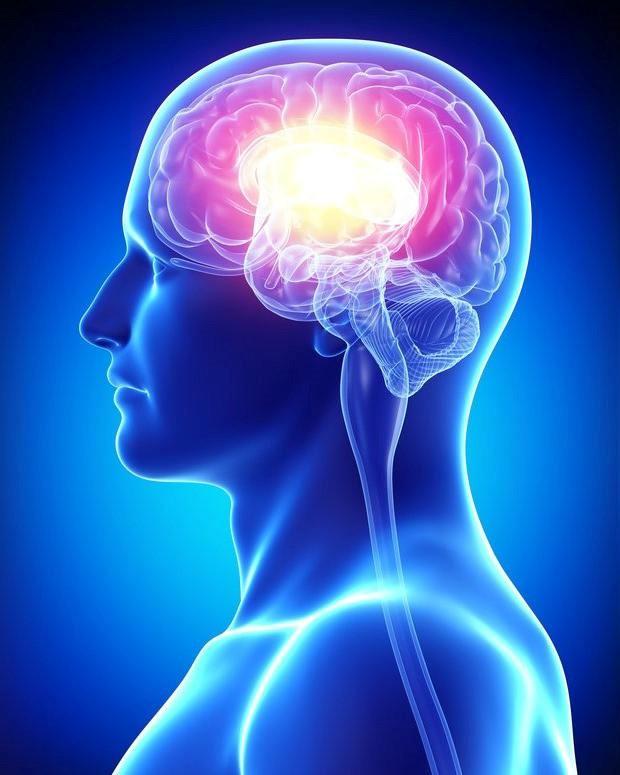 Beyin Tümörüne Ne İyi Gelir: Beyin Tümörü İçin Bitkisel Tedavi