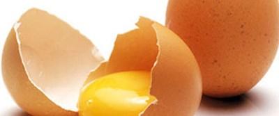 Hızlı refleksin sırrı: Yumurta