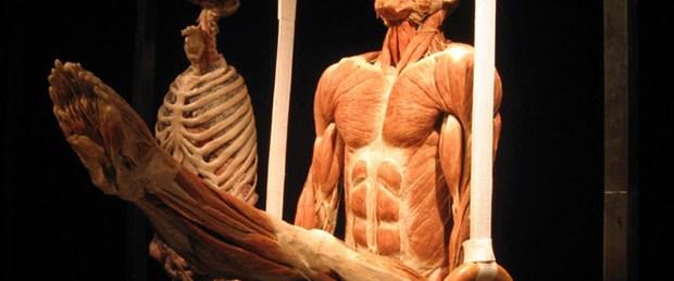 Kadavra sorununa ''Vücut dünyası'' desteği
