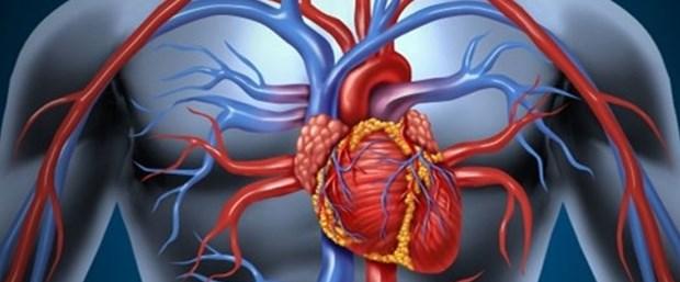 kalp hastalarına.jpg