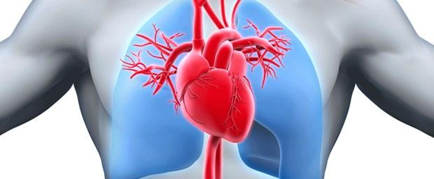 Epikardiyal yağ birikimi kalp hastalığı riskini artırıyor.png