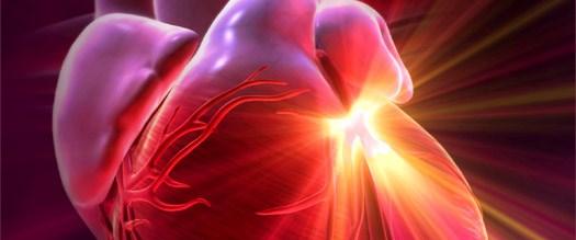 Kalp hastalıklarından korkmuyoruz