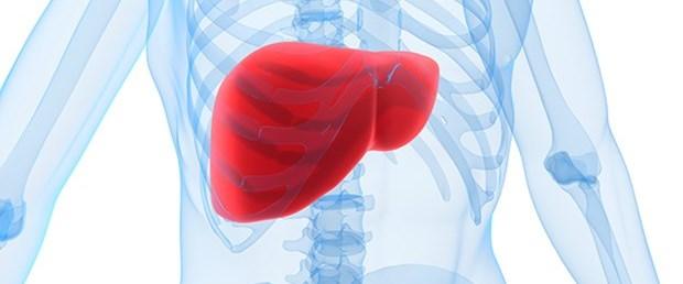 Karaciğer yağlanmasına karşı 8 etkili önlem.jpg