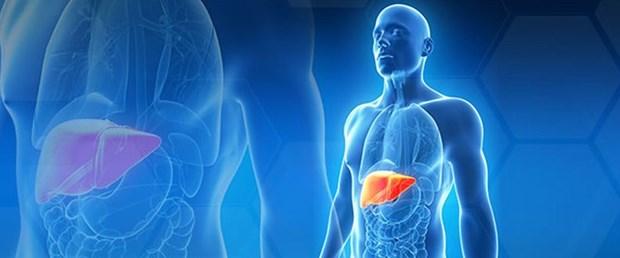 karaciger-transplantasyonu-1.jpg