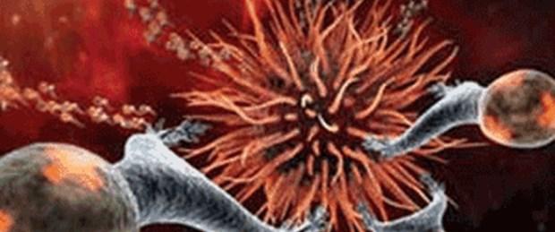 Kök hücreden pankreas ve bağırsak dokusu