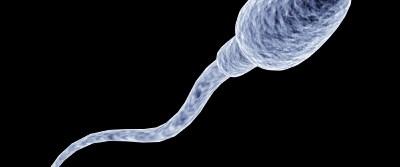 Kök hücreyle sağlıklı sperm
