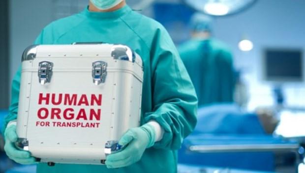Organ nakli için Türkiye'ye gelen hasta sayısı 2 kat arttı.jpg