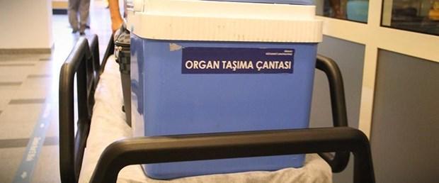 organ nakli aa.jpg