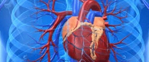 Suni kalp dokusu üretildi