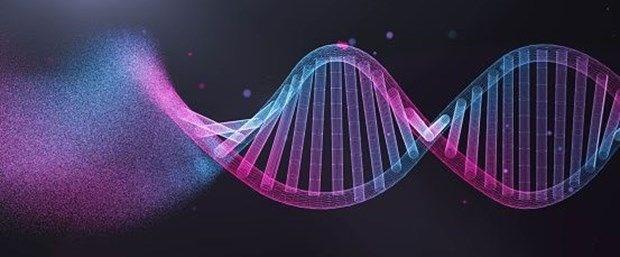 1. DNA'daki hasar birikiyor