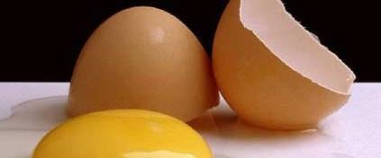 Yumurtanın raf ömrü 2 yıla çıkarıldı