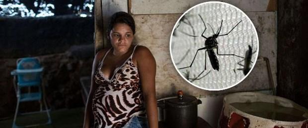 zika virüs cinsel ilişki030216.jpg