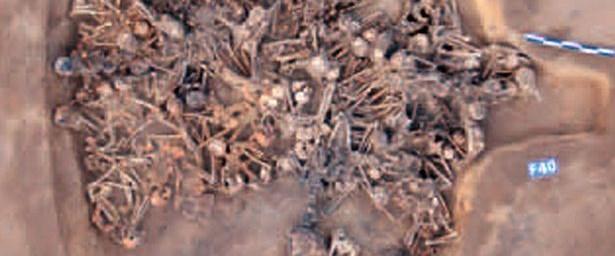 PAY-house-of-skeletons.jpg