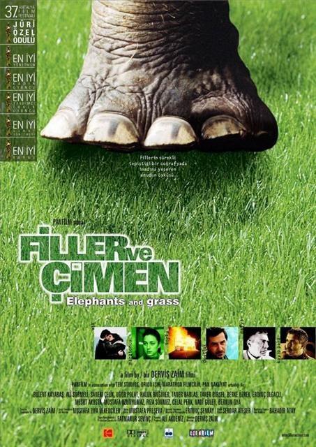 En iyi 40 yerli film